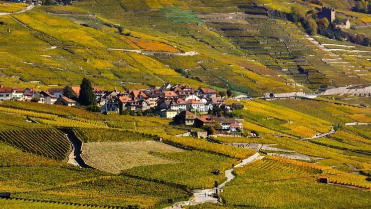 Trouver déménageur canton de Vaud